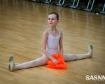 sasnn-photo-ballet-school-011213-slr-48