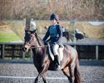 SASNN-PHOTO portfolio equestrian 15