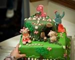 sasnn-photo_events_birthday_270113_slr-70