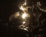 sasnn-photo-helloween-cave-2013-slr-28