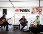 sasnn-photo_marlborough_jazz_festival_2012_s-101
