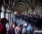 events-salisbury-art-fesival-2014-slr-1