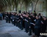 events-salisbury-art-fesival-2014-slr-3