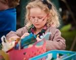 events-salisbury-art-fesival-2014-slr-60