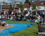 events-salisbury-art-fesival-2014-slr-82