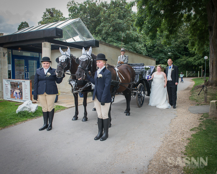 Horses and Carriage Ready