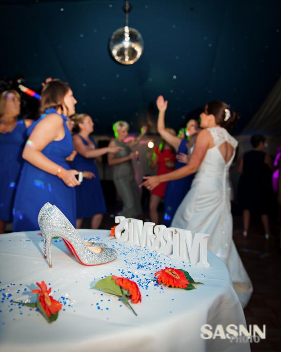 sasnn-photo-wedding-sc-060913-slr-514
