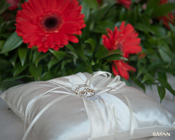 sasnn-photo_wedding_sl_280313-slr-5