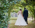 sasnn-photo_wedding_stephnadine_120912_slr-176